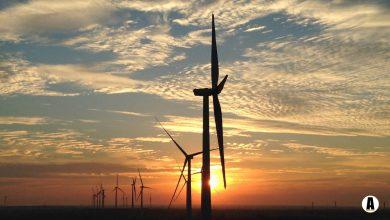 Renewable, Bioenergy