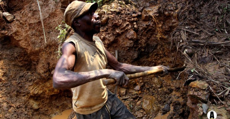 Investors, Congo