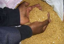 Mineral Exports